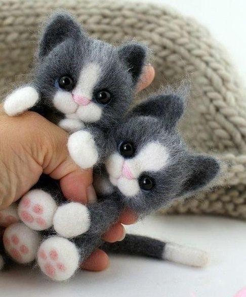 Войлочные котята ❤