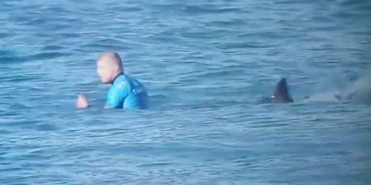un requin attaque un surfeur en pleine compétition [video] - http://www.2tout2rien.fr/un-requin-attaque-un-surfeur-en-pleine-competition-video/