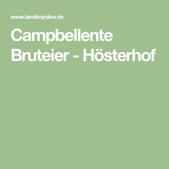 Campbellente Bruteier - Hösterhof