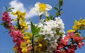"""Képtalálat a következőre: """"virágcsokor"""""""