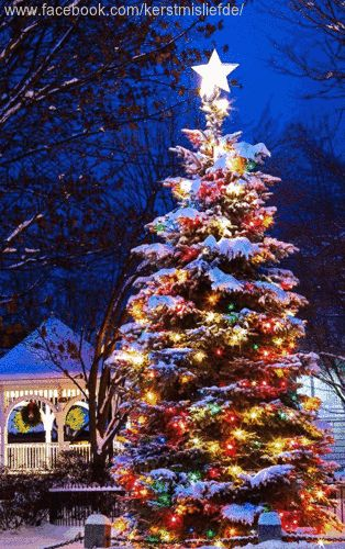 70 best Outside Christmas Decor images on Pinterest Natal - christmas decorations for outside