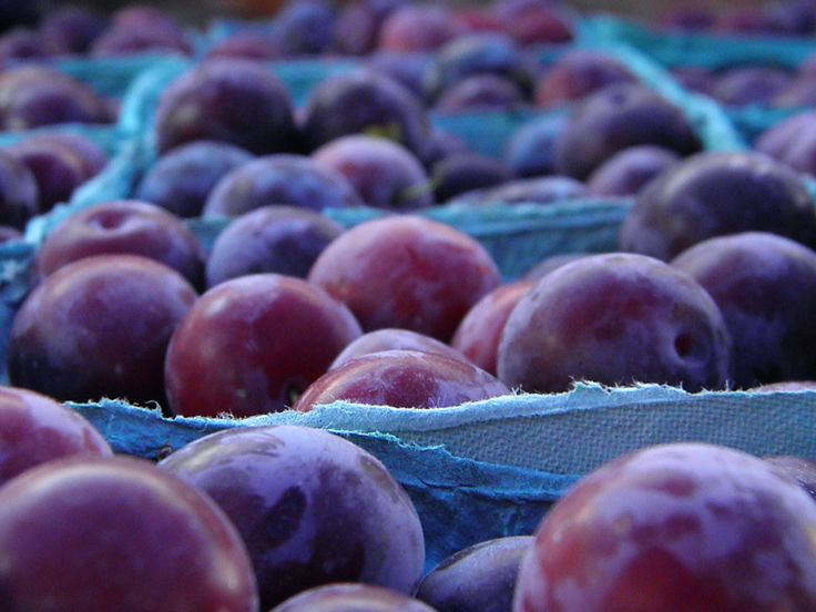 is this a peck of plums?