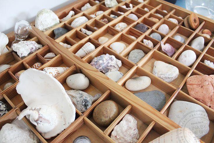 Inred med stenar & snäckor