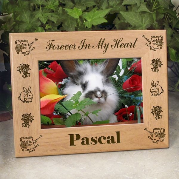 18 best Pet Lover Picture Frames images by Etched In My Heart on ...