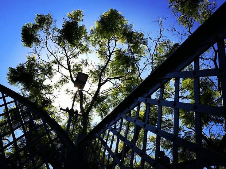 """""""Me atormenta tu amor que no me sirve de puente porque un puente no se sostiene de un solo lado…"""" #cortazar #bridge #puente #traveller #trainstation #bluesky #sky #cielo #ciel #cieloazul #trees #arbres #arboles #structure #light #sunlight #instasky..."""