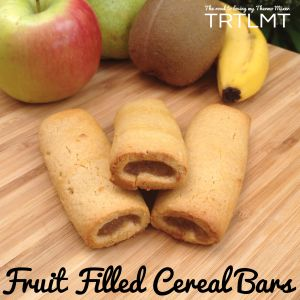 Fruit Filled Cereal Bars | The Road to Loving My Thermo Mixer