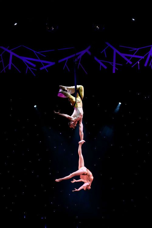Hire Book Duo Odyssey Aerial And Acrobatic Duo Circus Stuff