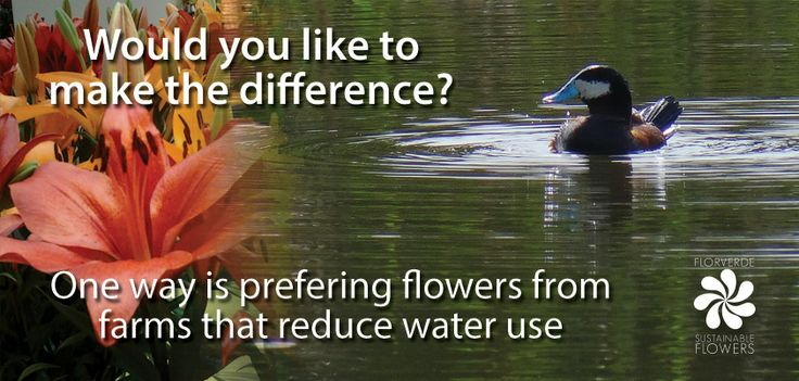 Would you like to #MakeTheDifference?