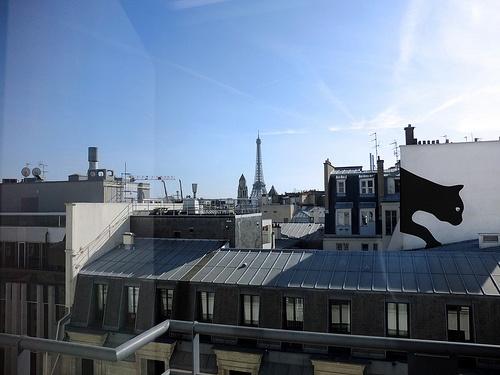 Paris. #TheCat