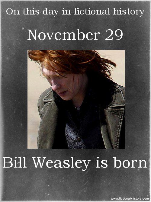 Name:Bill Weasley - Birthdate:November 29 - Sun Sign:Sagittarius, the Archer I share a birthday with Bill Weasley!!!!!
