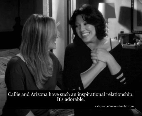 callie and arizona meet