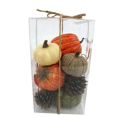 Holiday Living Indoor Mini Pumpkin & Pinecone Box Set
