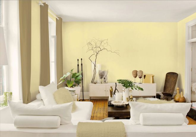 Living Room  Living Room http://www.houzz.com/pale-yellow-paint