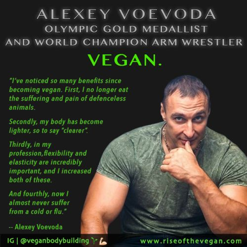 "riseofthevegan: "" Some more 'Veganuary' inspiration to share! Alexey Voevoda is a Russian athlete who has not only won gold at the Arm Wrestling World Championships but also secured two gold medals at the last winter Olympics in the Bobsleigh event..."