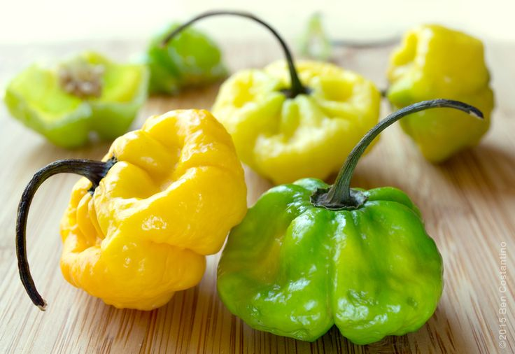 Ajicito Dulce Peppers A Key Ingredient In Making