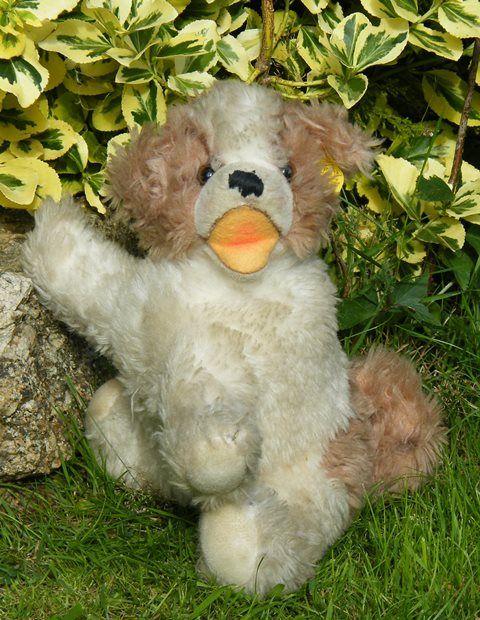 Vintage Steiff 'Cosy Molly' dog
