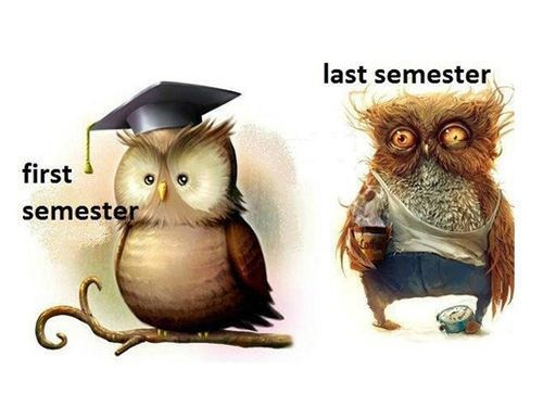 COLLEGE: I am not sure what that second photo is, but it looks accurate.