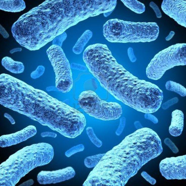 La causa del acné está en las bacterias de la piel