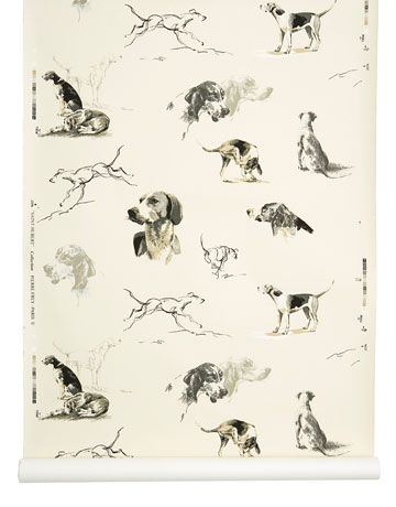 Wallpapers Featuring Mans Best Friend Cute Dog WallpaperPrint