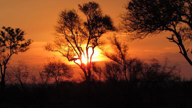 Mais uma do pôr do sol mais bonito que já vi na vida. Kruger National Park, África do Sul.