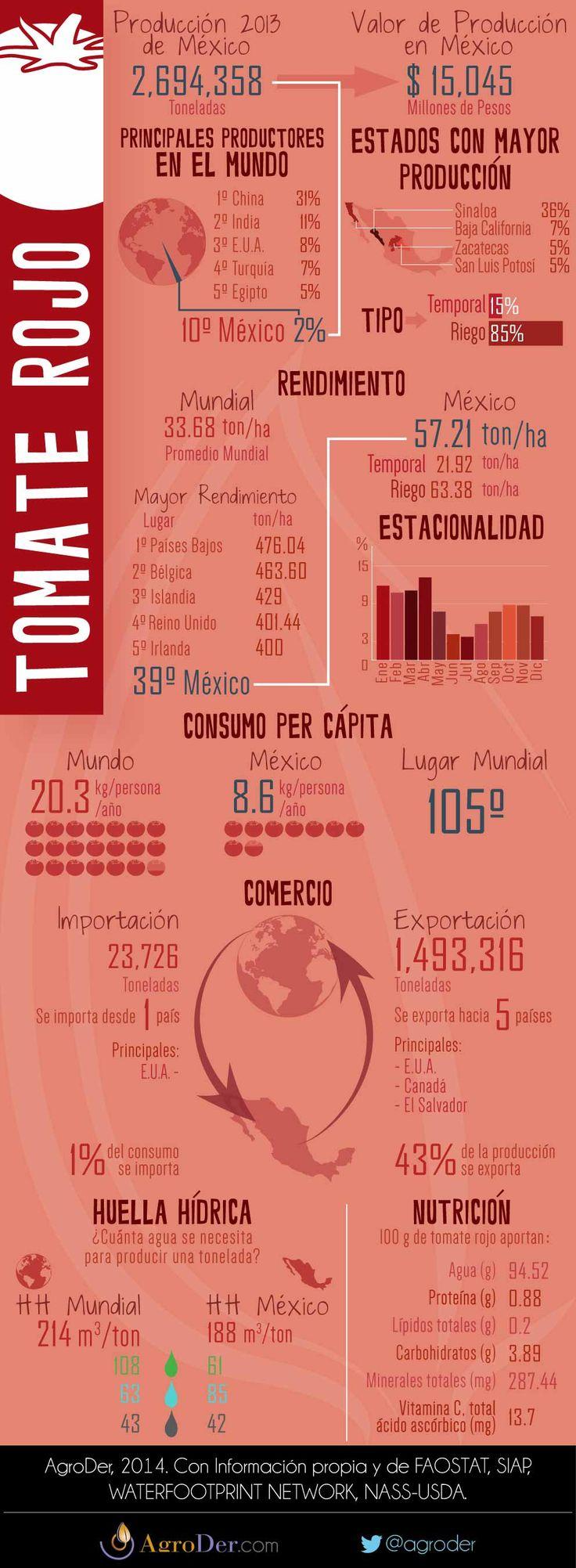 Infografía - Tomate Rojo en México, 2013.