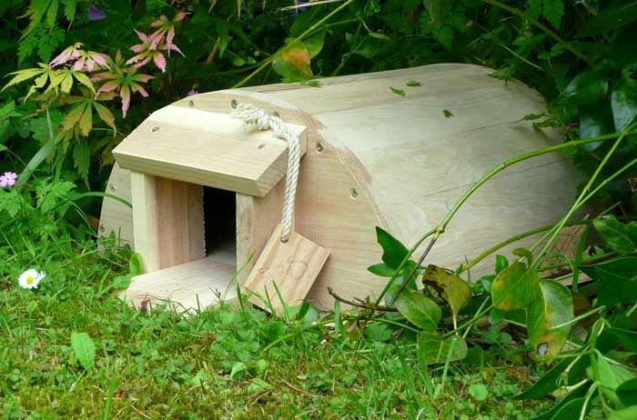 Ежи в саду, строим домик