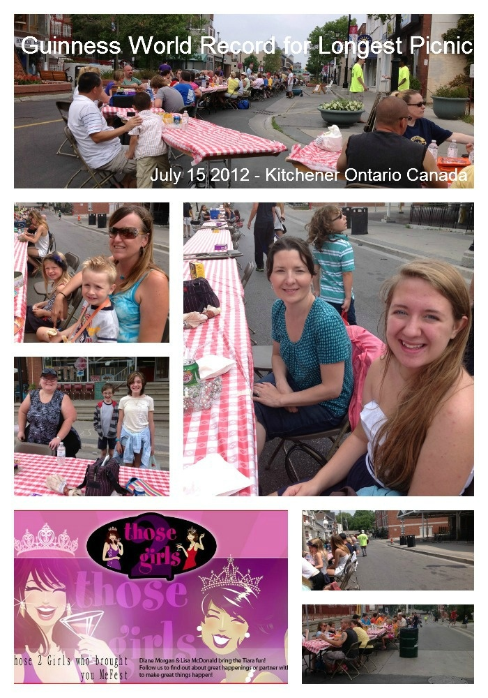 The Sunshine Is In: Guinness Book Of World Records Longest Picnic