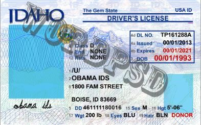 Template Idaho Drivers License In 2020 Drivers License