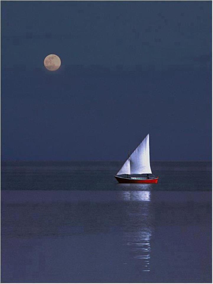 Sailing the Greek seas … what a dream | @༺♥༻LadyLuxury༺♥༻