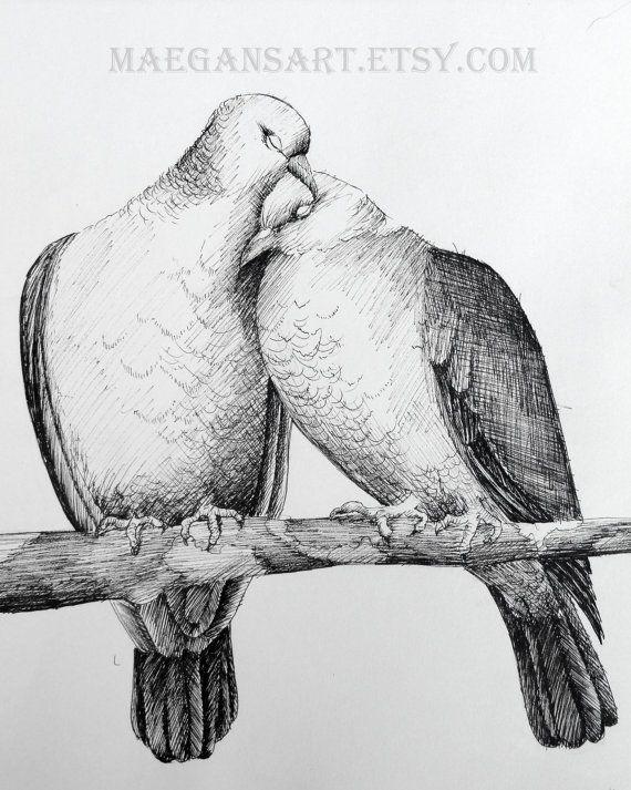 Pencil Drawings Love Birds Pencildrawing2019