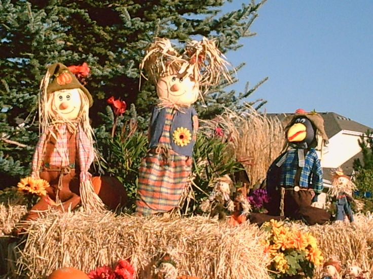 You can get some cute scarecrows for fall at Walmart for