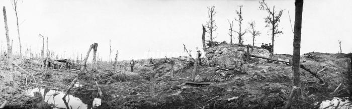 Battle of Messines Ridge. British troops viewing the smashed remains of a German bunker and trenches at Oostaverne Wood. June 11, 1917.