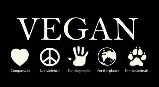Compassion. For the people. For the planet. For the animals.Inspiration, Vegan Recipe, Food, Vegan Infographic, Vegetarian, Go Vegan, Living, Vegan Lifestyle, Animal