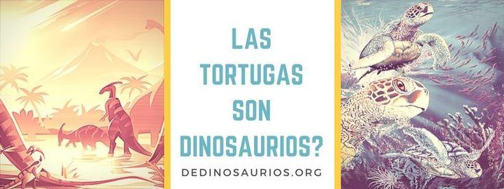 ¿Crees que las tortugas son dinosaurios? ¿O crees que no tienen nada que ver con ellos? Te traemos esa información y tortugas que parecen dinosaurios