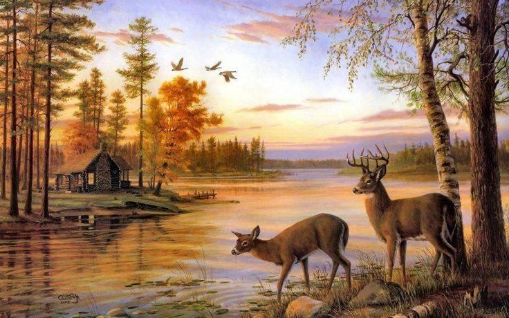 In Hd Deer Background Wallpapers Deer Desktop Wallpapers In Hd ...
