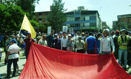 Profesores ulandinos se plantaron en las calles por la libertad y la democracia   Prensa ULA