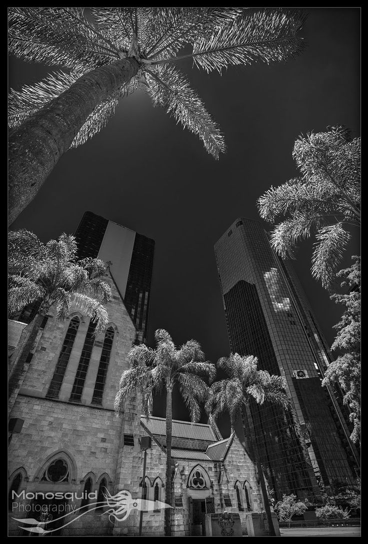 Street photography, St Stephen Cathedral, Brisbane. - (c) Copyright Monosquid 2013, All rights reserved. Come join our facebook page where you can receive freebies, get tips and tutorials on photography and join in on a fun and positive photography community.  https://www.facebook.com/monosquidphotography