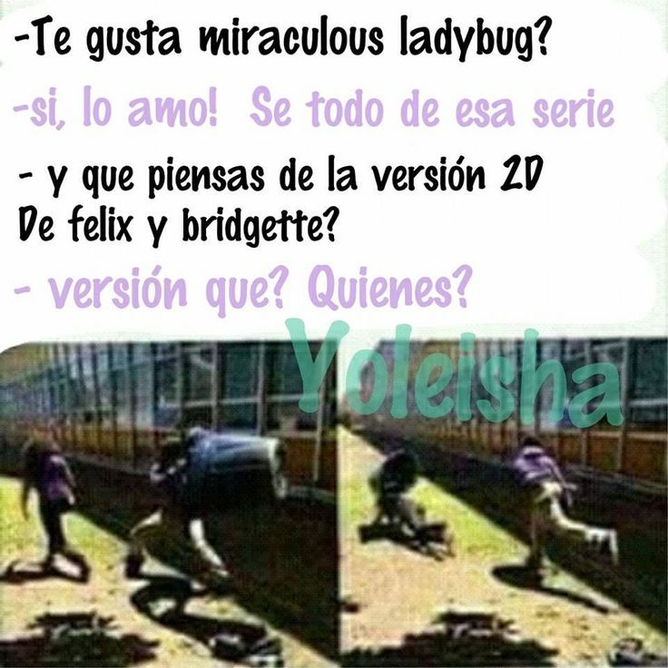 Leer Memes de miraculous ladybug - #22 - Wattpad