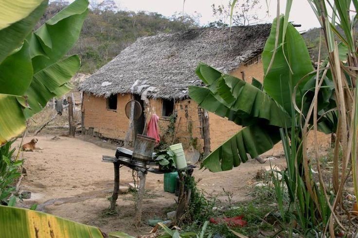 Casinha de pau-a-pique, no sertão brasileiro.  http://www.portalanaroca.com.br/confie-na-vida-e-siga-em-frente-o-mal-so-existe-quando-damos-poder-a-ele-e-nos-somos-do-tamanho-que-queremos-ser-_______________-marla-de-queiroz/