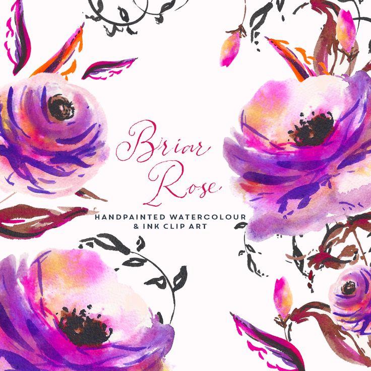 Aquarell-Hand-Painted-ClipArt-Grafik - Briar Rose Vibrant handgemalte Blumen Aquarell und Tusche. Dieses Set besteht aus 8 Stück; 2 Blumen-Köpfe, eins mit einem angehängten Stängel und auch mit dem Vorbau getrennt, eine Knospe und einige Blätter. Es war handgemalt in einem lockeren Stil mit viel Wasser und Zeichnen von Druckfarben, um die Schatten zu markieren. Verwenden Sie die einzelnen Stücke, um eigene einzigartige Kombinationen und Kunstwerke erstellen. Ferner sind das 2 Vorschau-Menü…