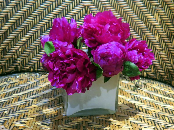 Luxurious and enticing - dark pink peonies