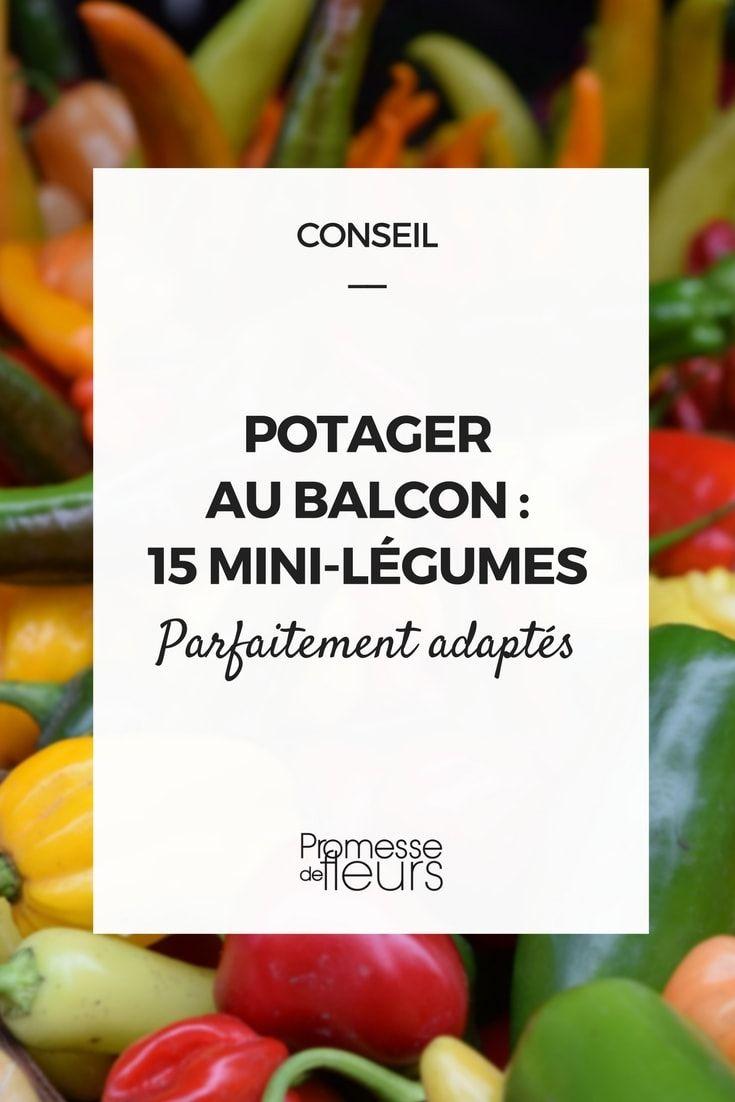 Les 25 Meilleures Id Es De La Cat Gorie Palette De Jardin D 39 Herbes Aromatiques Sur Pinterest
