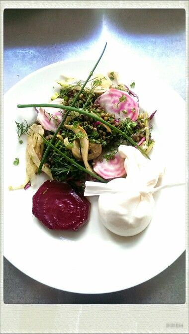 Puy lentils, marinated fennel, woolong smoked beetroot, Burrata. Tonda pink beets, herbs.