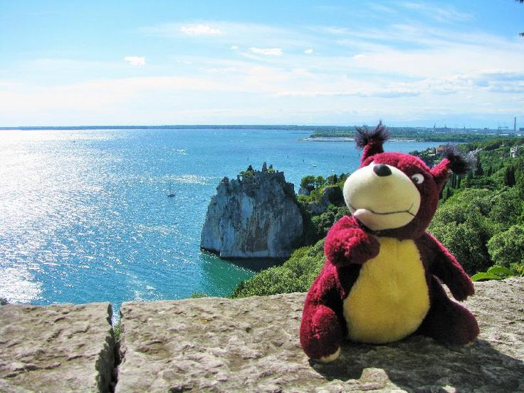 Lost on 08 Aug. 2016 @ sentiero Rilke, DUINO (TS), ITALY. Dear all.Here is the last pics from Oachkatzl... émoticône frown:-( ... Toy have been lost in DUINO (IT) please help us to find it. Please share as much as possible . May someone found it and wil... Visit: https://whiteboomerang.com/lostteddy/msg/6awnzy (Posted by Oachkatzl Schwoaf on 10 Aug. 2016)