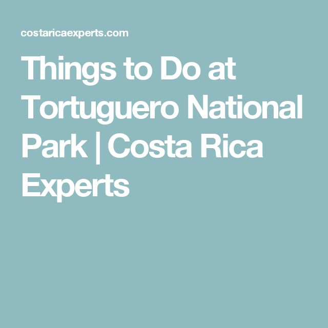 Things to Do at Tortuguero National Park | Costa Rica Experts