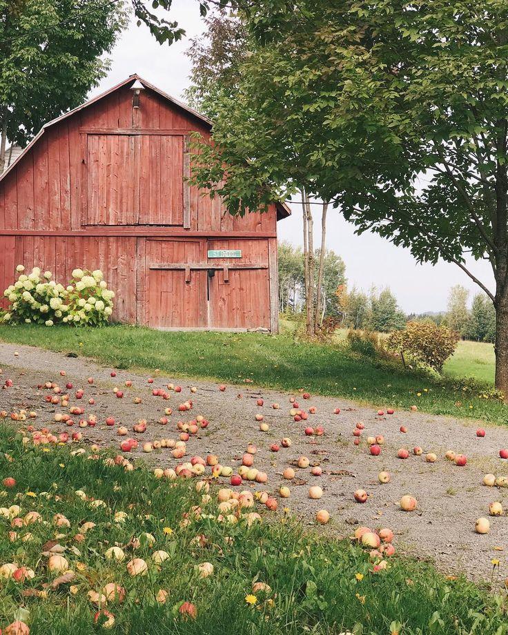 481 Best Old Barns Images On Pinterest