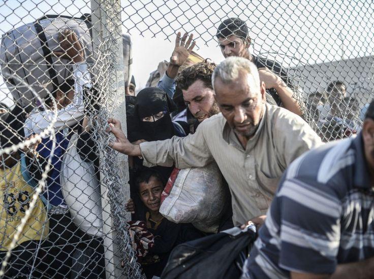 14 juin  #Syrie #Syria #migrants #refugees #réfugiés: