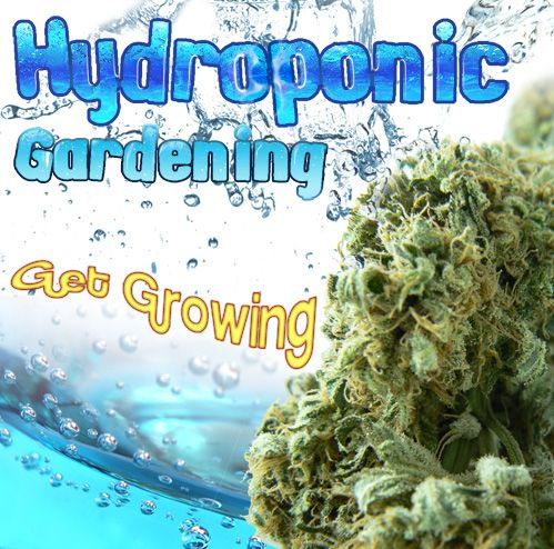 Switching to hydroponics adds up… from #Doh_to_Dro