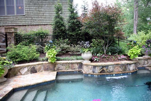 1000 images about pool landscaping on pinterest day for Garden elephant pool