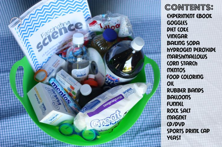 Basket for silent auction or FunGift Idea:  Science Kit for Kids (with free printables)